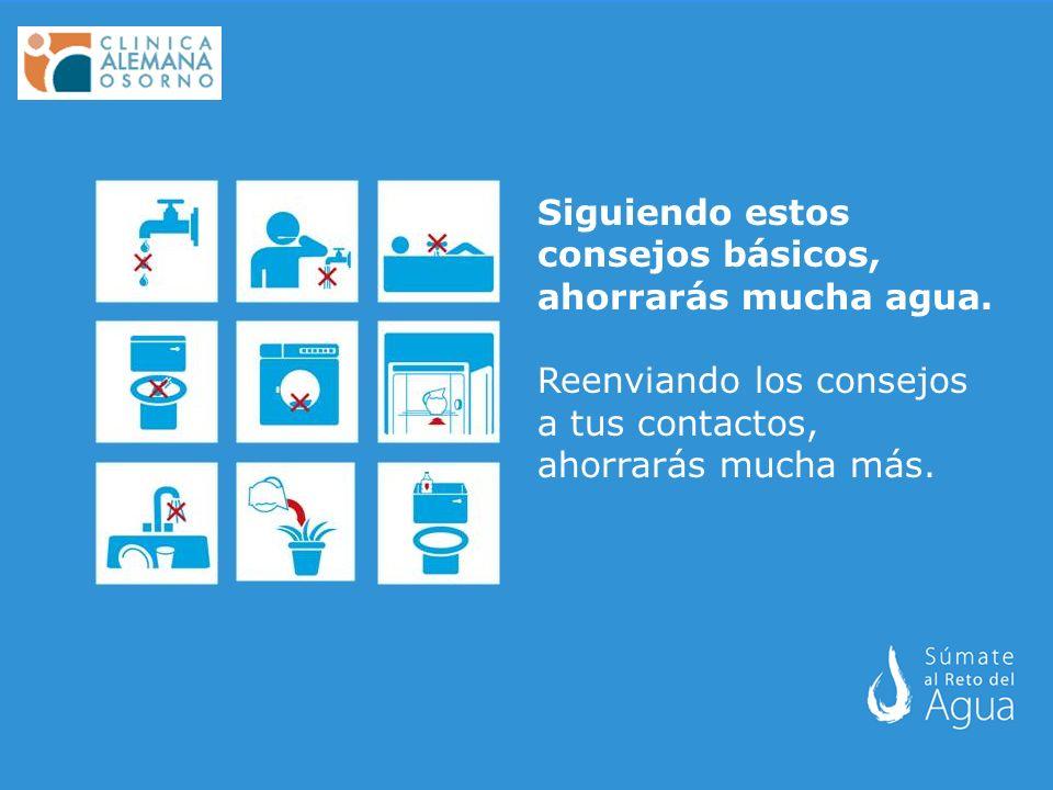 Siguiendo estos consejos básicos, ahorrarás mucha agua.