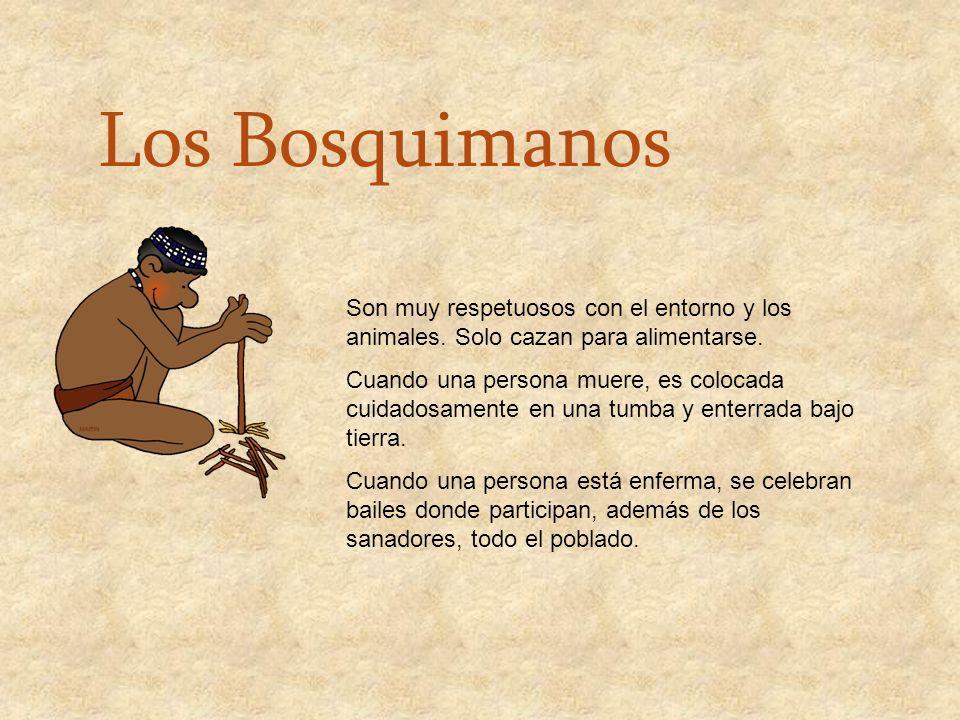 Los Bosquimanos Son muy respetuosos con el entorno y los animales. Solo cazan para alimentarse.