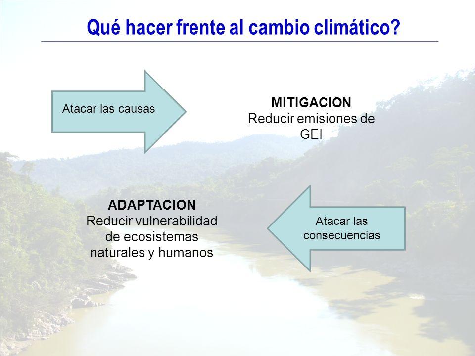 Qué hacer frente al cambio climático