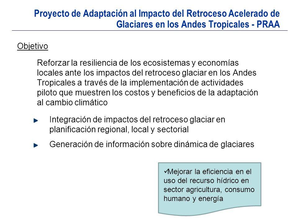 Proyecto de Adaptación al Impacto del Retroceso Acelerado de Glaciares en los Andes Tropicales - PRAA