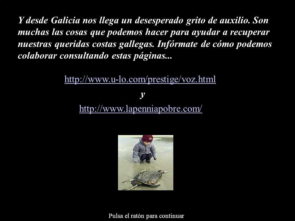 Y desde Galicia nos llega un desesperado grito de auxilio
