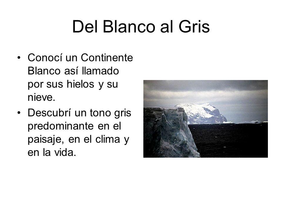 Del Blanco al Gris Conocí un Continente Blanco así llamado por sus hielos y su nieve.