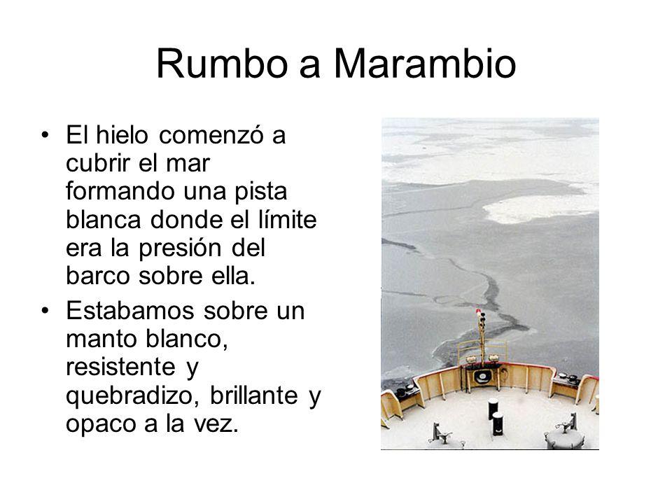 Rumbo a Marambio El hielo comenzó a cubrir el mar formando una pista blanca donde el límite era la presión del barco sobre ella.