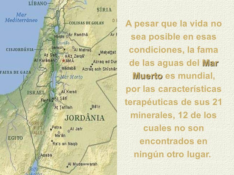 A pesar que la vida no sea posible en esas condiciones, la fama de las aguas del Mar Muerto es mundial, por las características terapéuticas de sus 21 minerales, 12 de los cuales no son encontrados en ningún otro lugar.