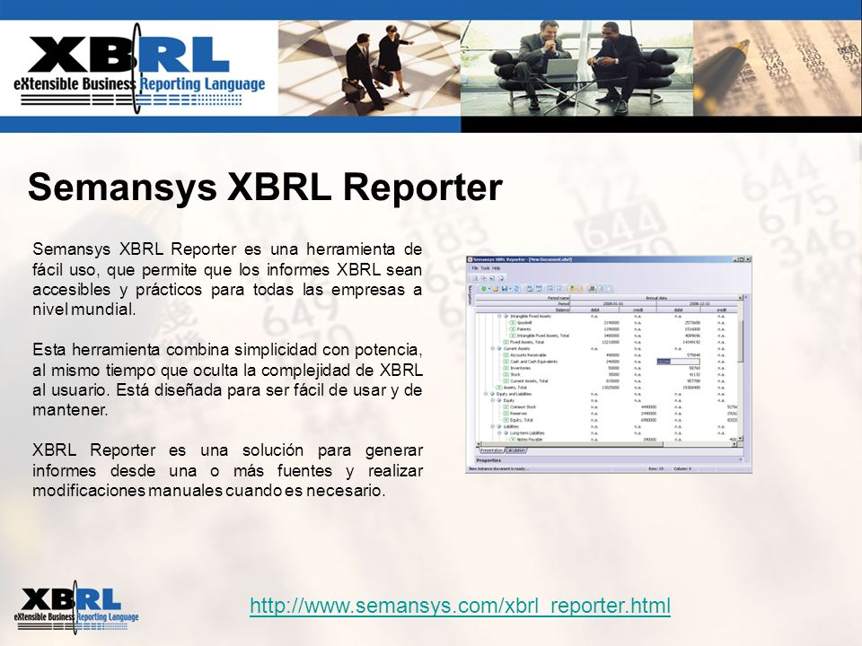 Semansys XBRL Reporter