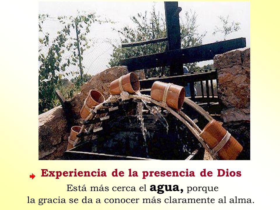 Experiencia de la presencia de Dios