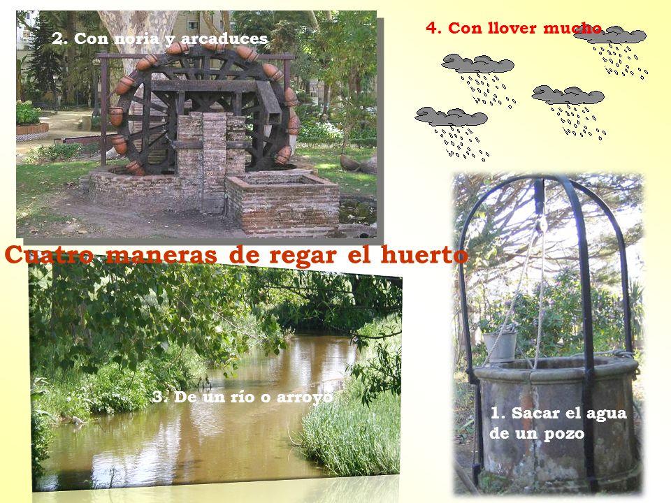 Cuatro maneras de regar el huerto