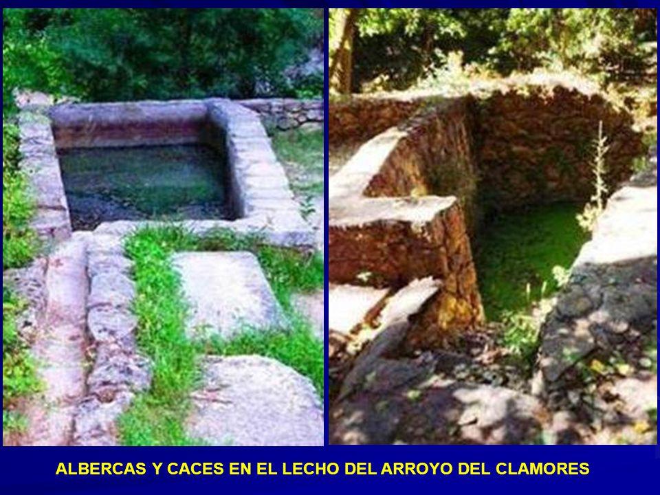 ALBERCAS Y CACES EN EL LECHO DEL ARROYO DEL CLAMORES