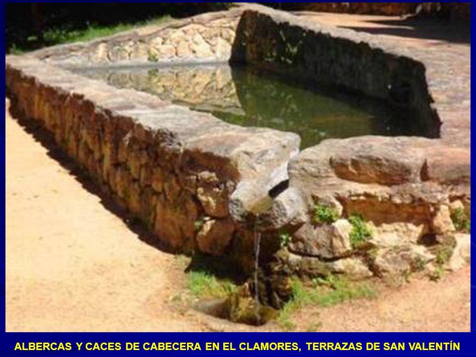 ALBERCAS Y CACES DE CABECERA EN EL CLAMORES, TERRAZAS DE SAN VALENTÍN