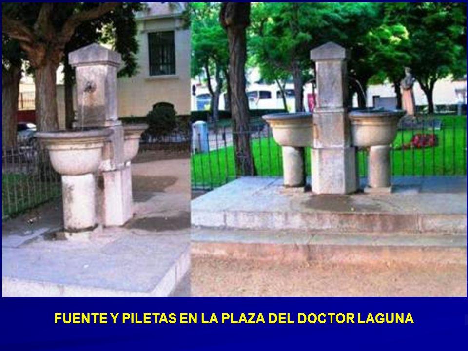 FUENTE Y PILETAS EN LA PLAZA DEL DOCTOR LAGUNA