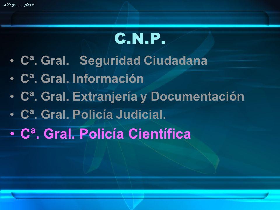 C.N.P. Cª. Gral. Policía Científica Cª. Gral. Seguridad Ciudadana
