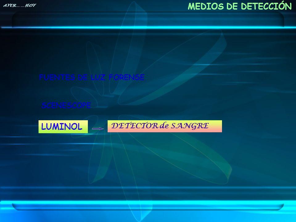 MEDIOS DE DETECCIÓN LUMINOL FUENTES DE LUZ FORENSE SCENESCOPE