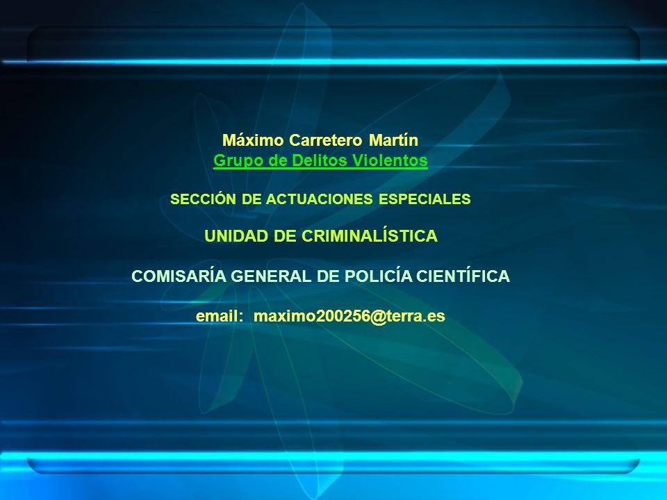 Máximo Carretero Martín Grupo de Delitos Violentos