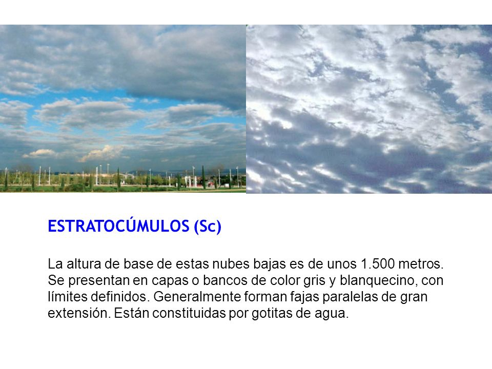 ESTRATOCÚMULOS (Sc)