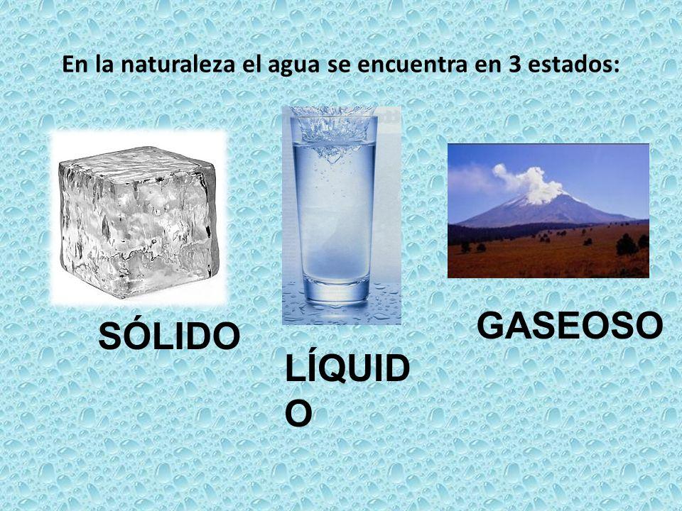 En la naturaleza el agua se encuentra en 3 estados: