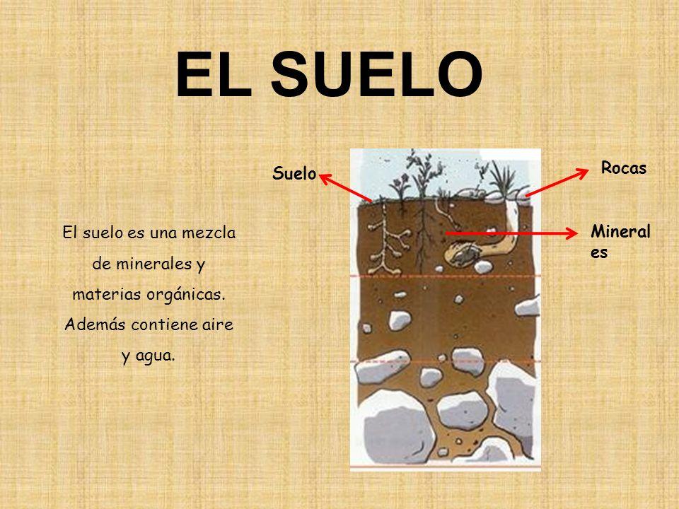 EL SUELO Rocas. Suelo. El suelo es una mezcla de minerales y materias orgánicas. Además contiene aire y agua.