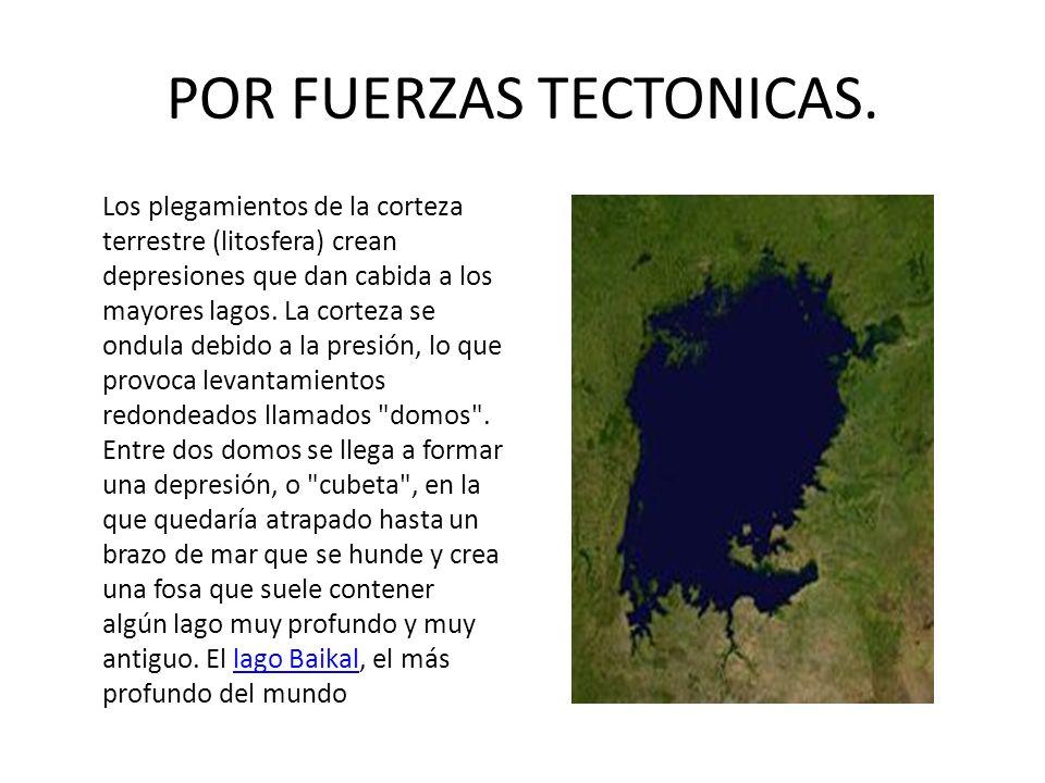 POR FUERZAS TECTONICAS.