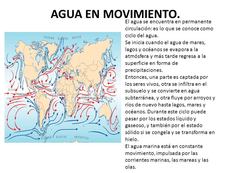 AGUA EN MOVIMIENTO. El agua se encuentra en permanente circulación: es lo que se conoce como ciclo del agua.