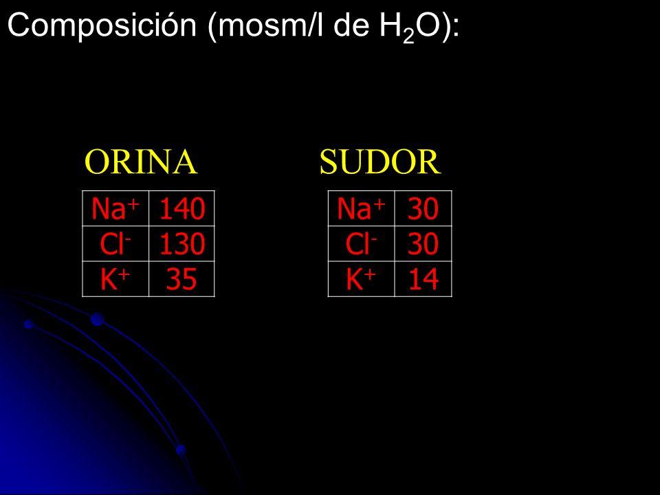 Composición (mosm/l de H2O):