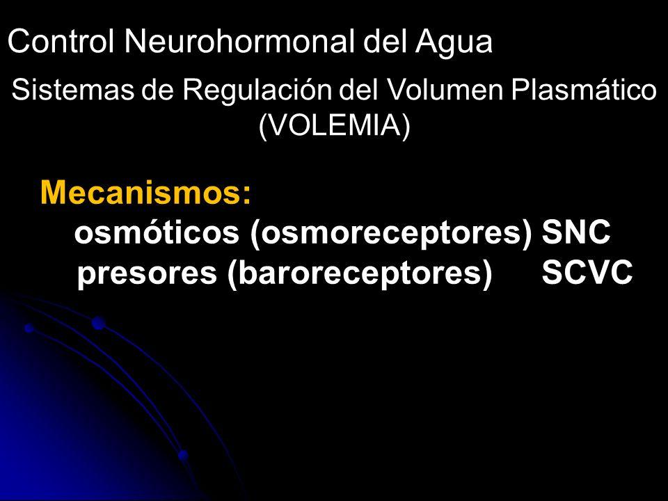 Sistemas de Regulación del Volumen Plasmático