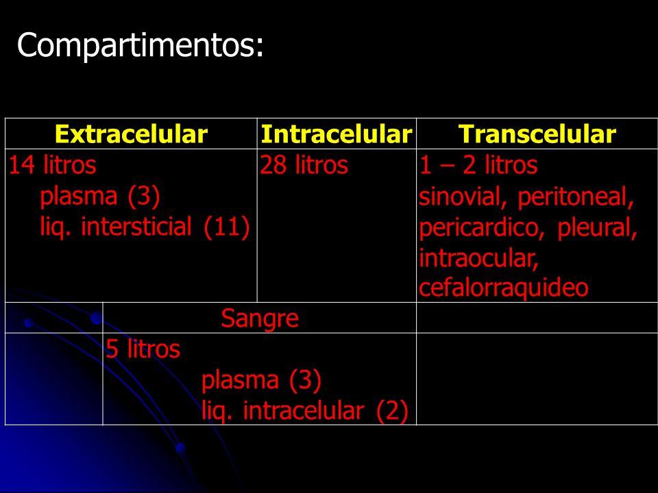 Compartimentos: Extracelular Intracelular Transcelular 14 litros
