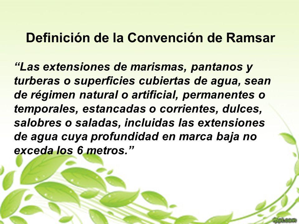 Definición de la Convención de Ramsar