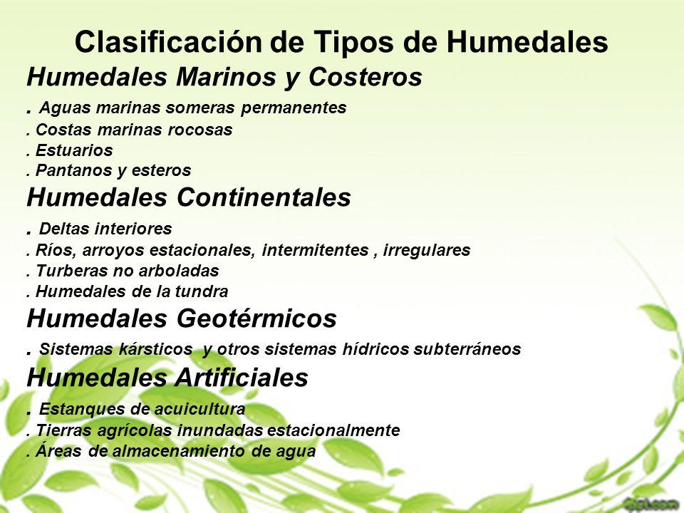 Clasificación de Tipos de Humedales
