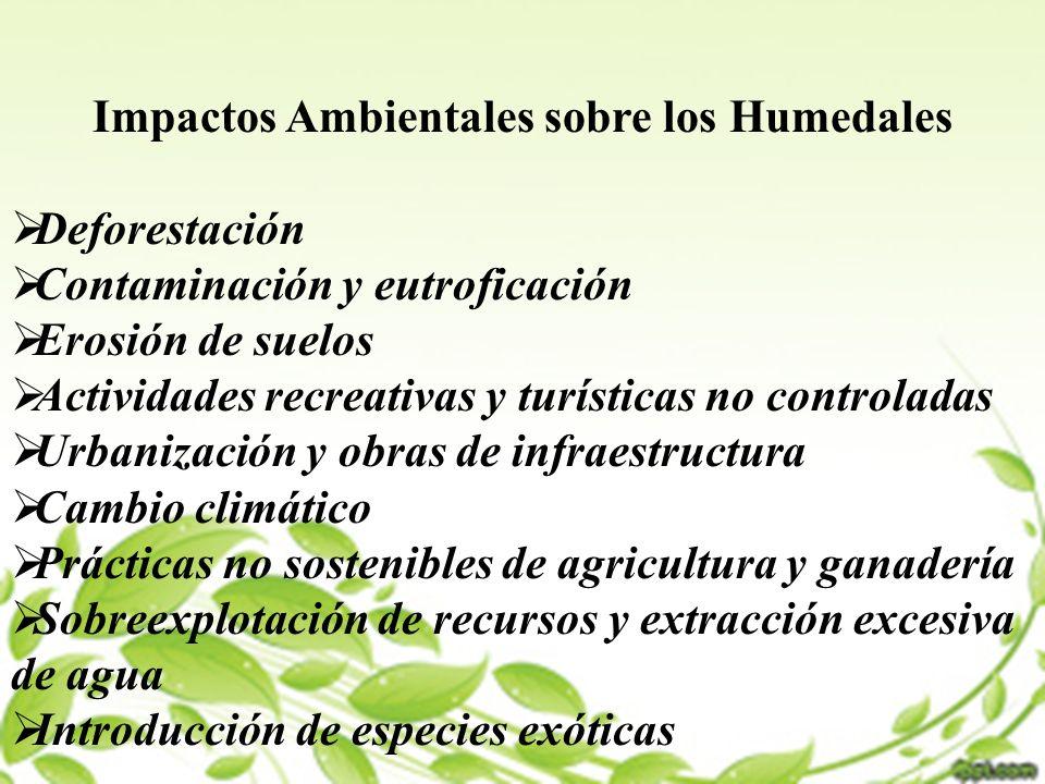 Impactos Ambientales sobre los Humedales
