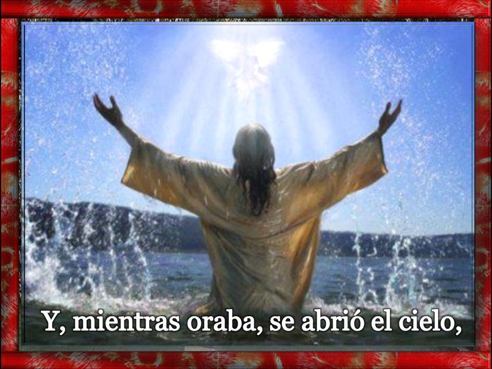 Y, mientras oraba, se abrió el cielo,
