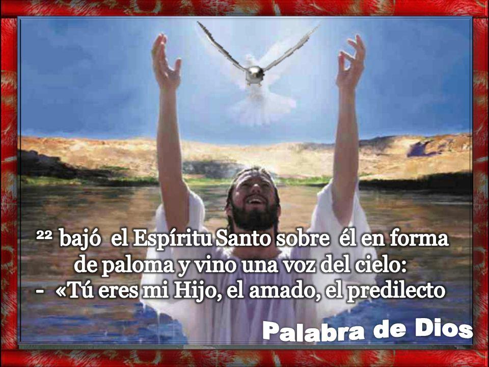 22 bajó el Espíritu Santo sobre él en forma de paloma y vino una voz del cielo: - «Tú eres mi Hijo, el amado, el predilecto