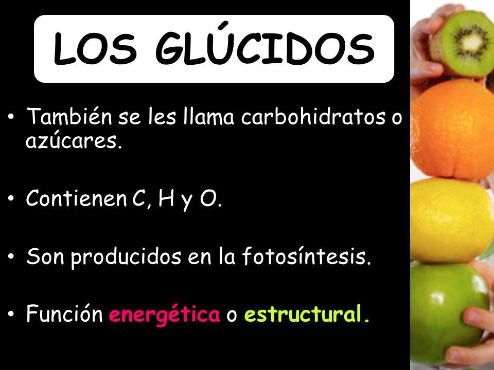 LOS GLÚCIDOS También se les llama carbohidratos o azúcares.