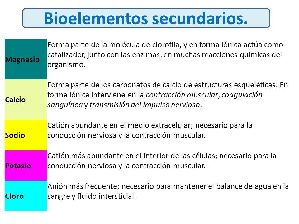 Bioelementos secundarios.