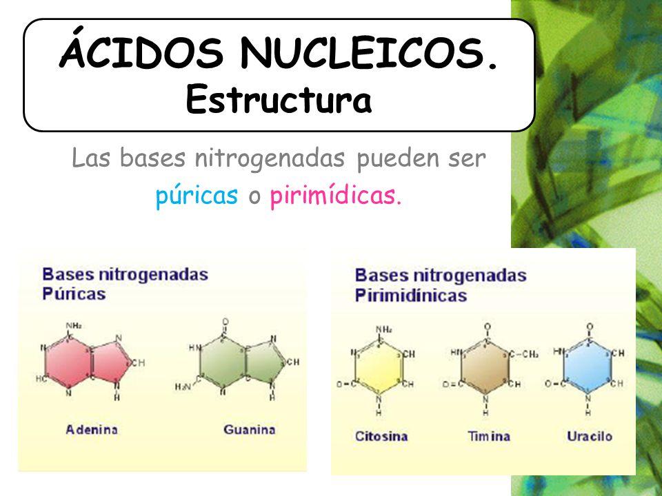 ÁCIDOS NUCLEICOS. Estructura