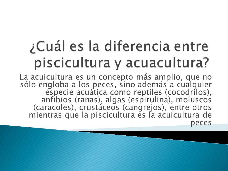 ¿Cuál es la diferencia entre piscicultura y acuacultura