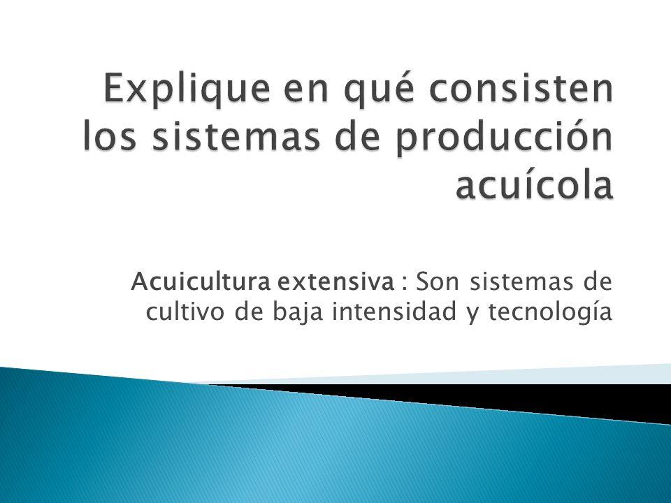 Explique en qué consisten los sistemas de producción acuícola
