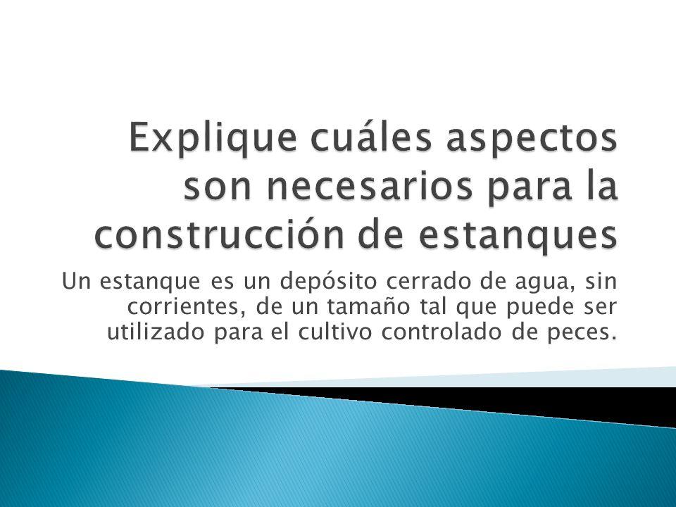 Explique cuáles aspectos son necesarios para la construcción de estanques