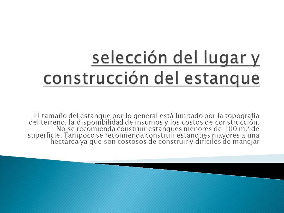 selección del lugar y construcción del estanque