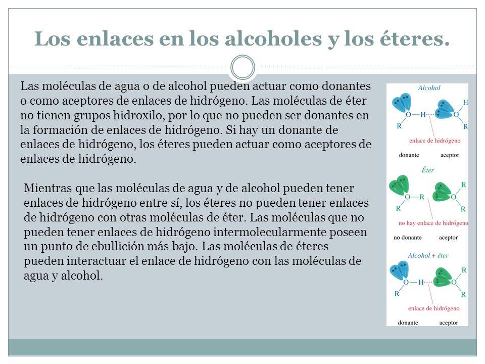 Los enlaces en los alcoholes y los éteres.