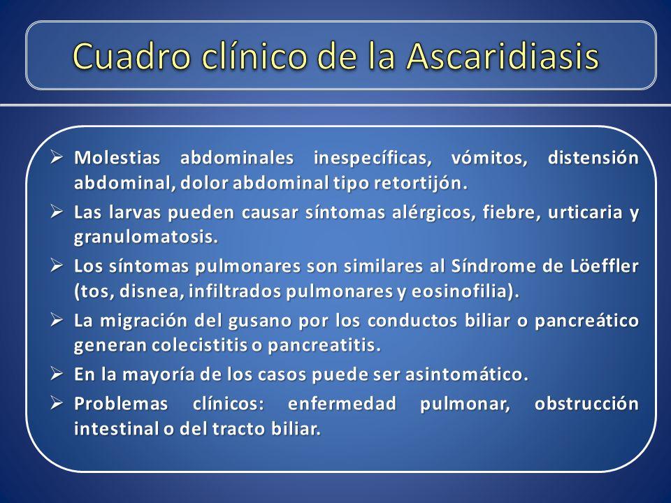 Cuadro clínico de la Ascaridiasis
