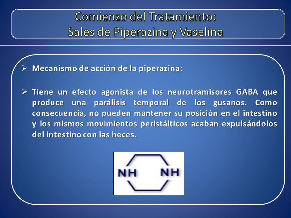 Comienzo del Tratamiento: Sales de Piperazina y Vaselina