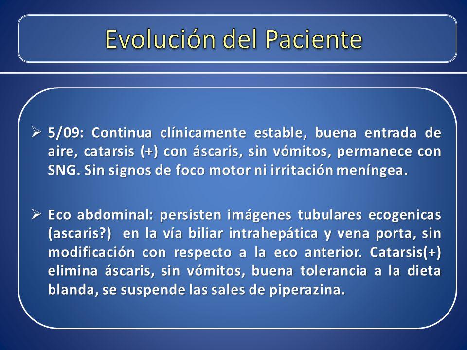Evolución del Paciente