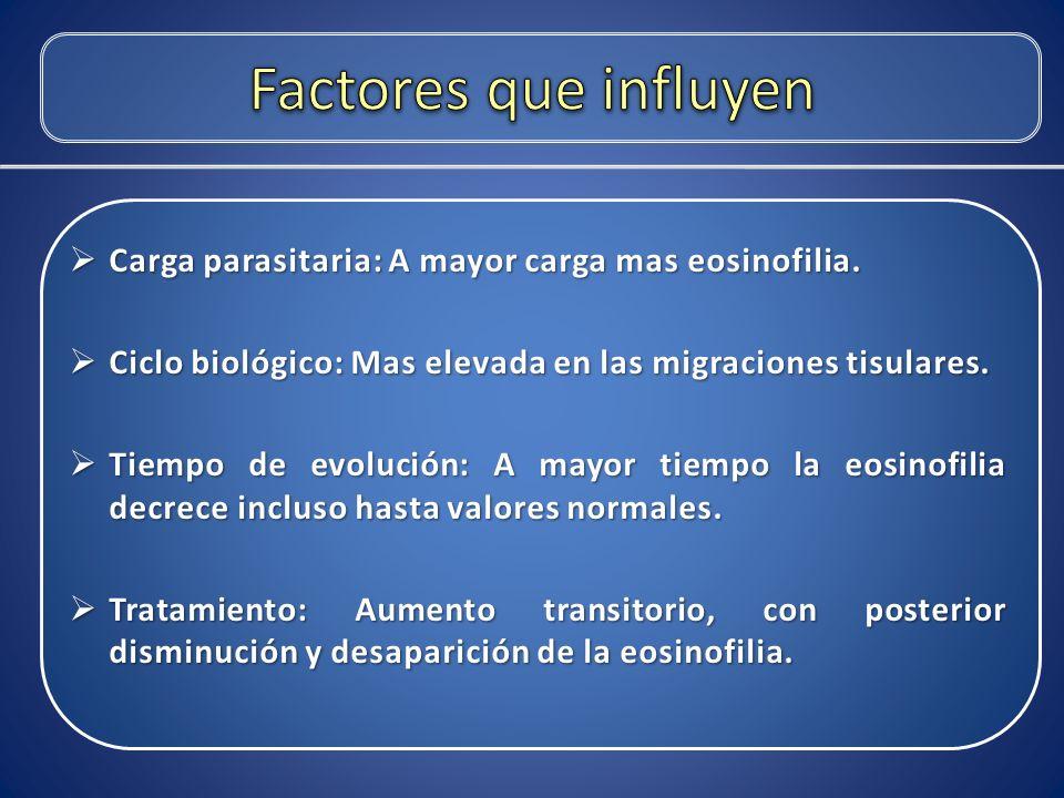 Factores que influyen Carga parasitaria: A mayor carga mas eosinofilia. Ciclo biológico: Mas elevada en las migraciones tisulares.