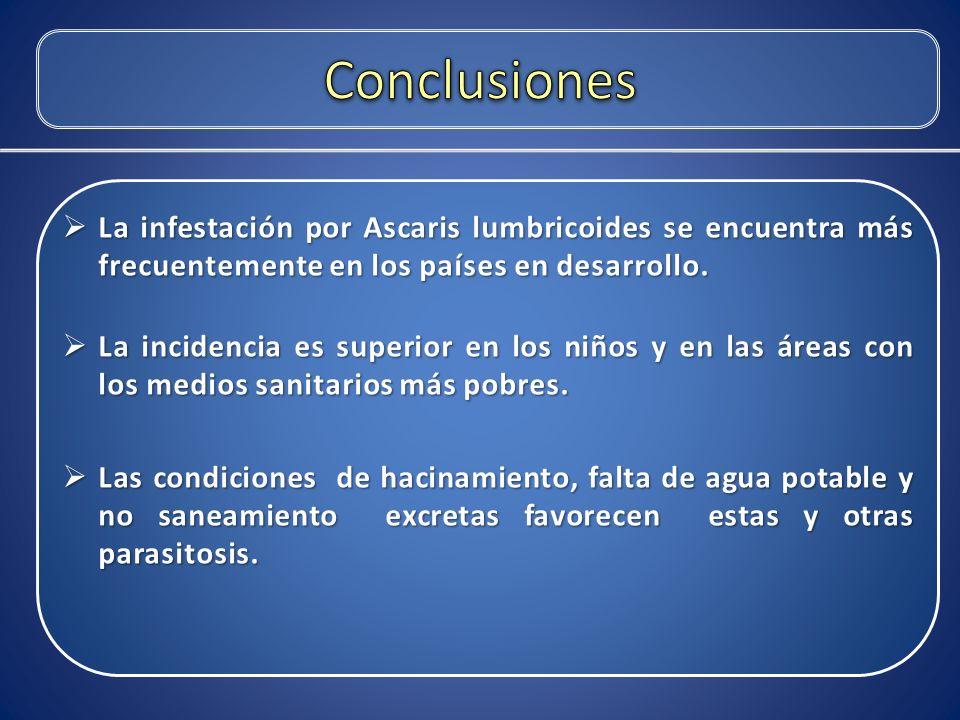 Conclusiones La infestación por Ascaris lumbricoides se encuentra más frecuentemente en los países en desarrollo.