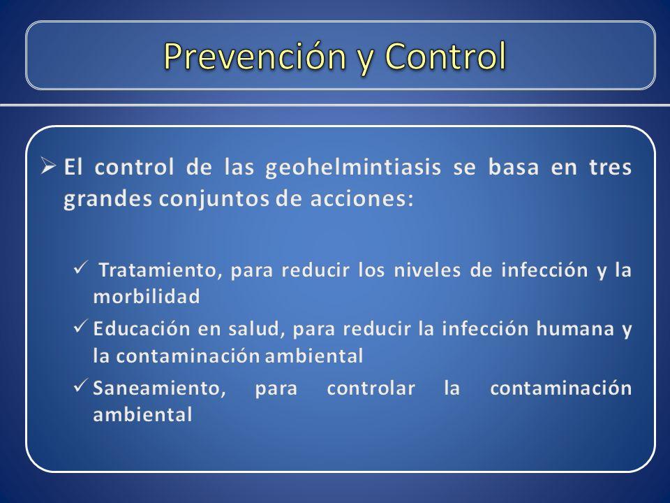 Prevención y Control El control de las geohelmintiasis se basa en tres grandes conjuntos de acciones: