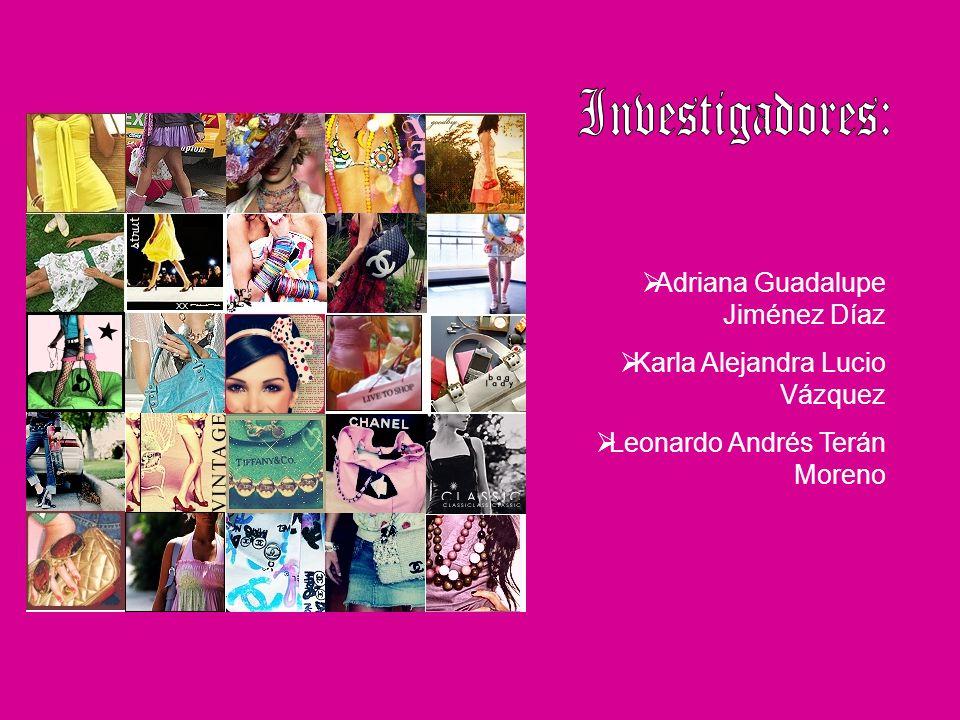 Investigadores: Adriana Guadalupe Jiménez Díaz
