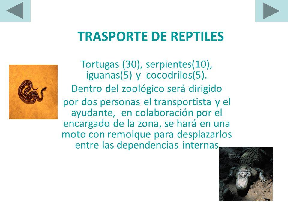 TRASPORTE DE REPTILES Tortugas (30), serpientes(10), iguanas(5) y cocodrilos(5). Dentro del zoológico será dirigido.