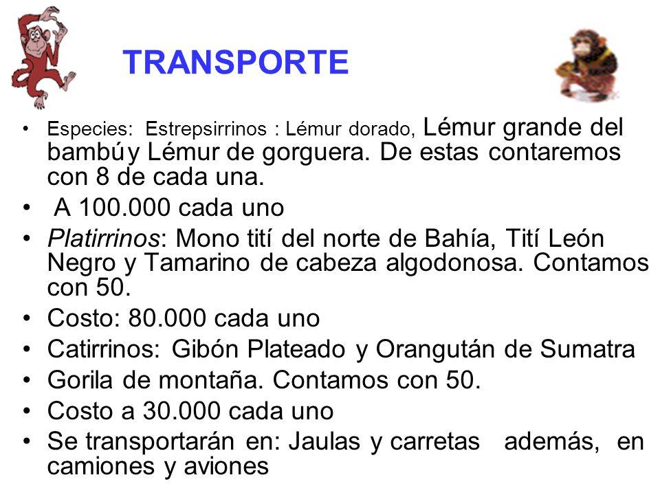 TRANSPORTE Especies: Estrepsirrinos : Lémur dorado, Lémur grande del bambú y Lémur de gorguera. De estas contaremos con 8 de cada una.