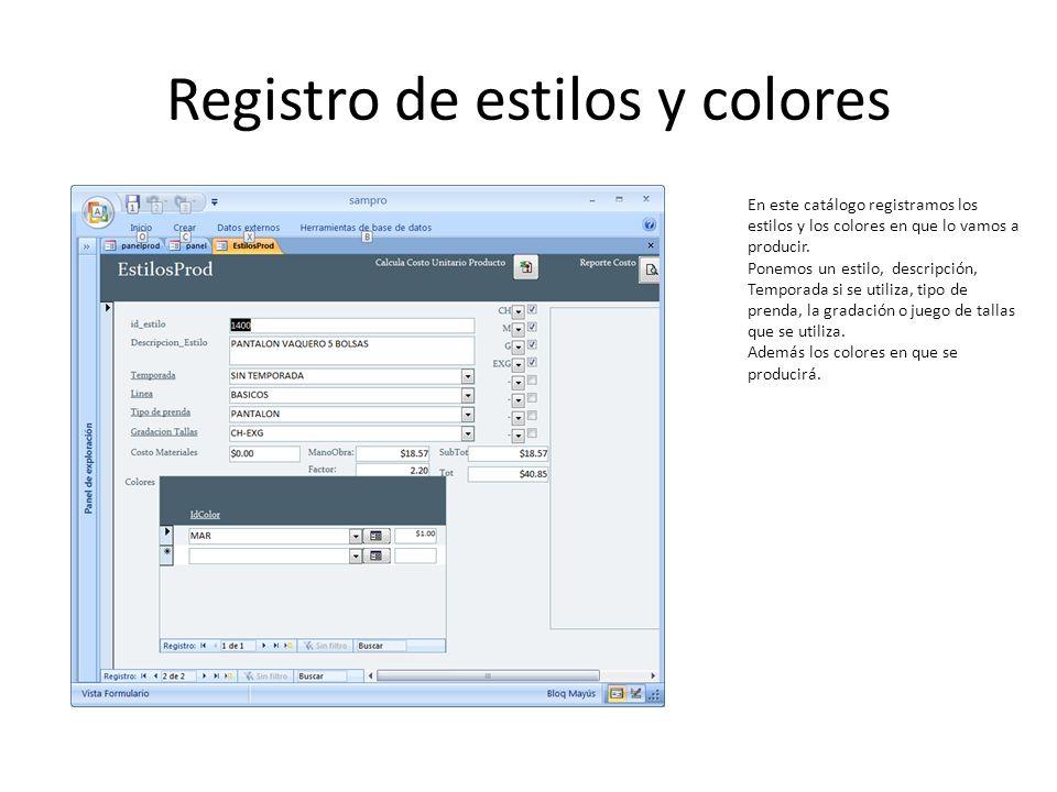Registro de estilos y colores