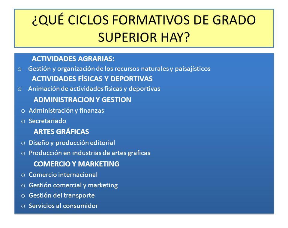 ¿QUÉ CICLOS FORMATIVOS DE GRADO SUPERIOR HAY