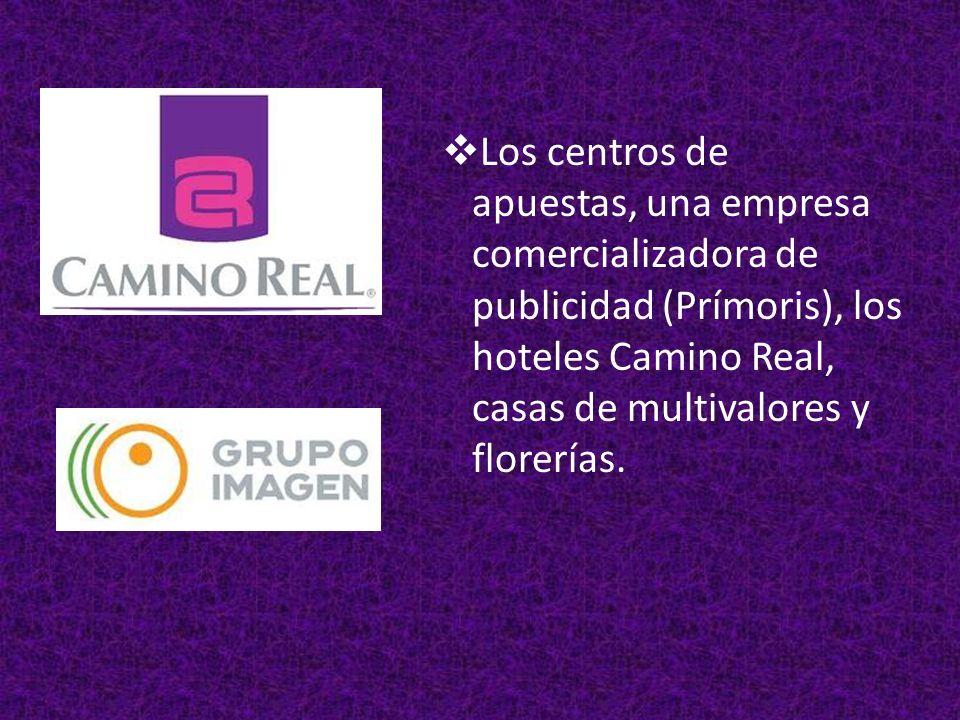 Los centros de apuestas, una empresa comercializadora de publicidad (Prímoris), los hoteles Camino Real, casas de multivalores y florerías.
